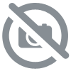 Transparent Window Scenes through the Year